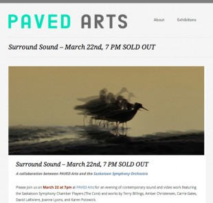 Carrie Gates performing at Surround Sound - An Audiovisual Concert at Paved Arts